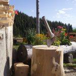 TAOU-La_Neuve_MG_6630