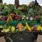 charette-coquette-legumes